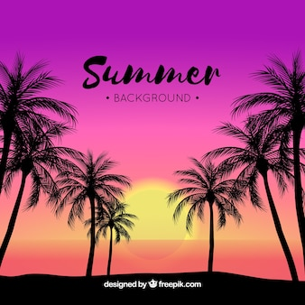 Tropical summer background at sunset