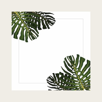 Tropical summer background design with frame