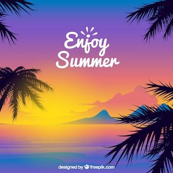 Priorità bassa tropicale di estate al tramonto