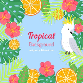 Tropical summer background with bird and flowers