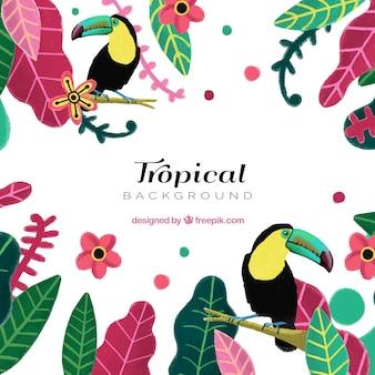 Тропический летний фон с яркими растениями и туканами