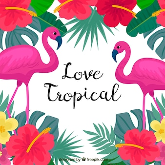 Tropical summer background with flamingos and colorful flowers