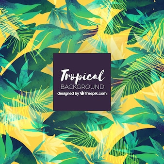 Tropical summer background with green plants
