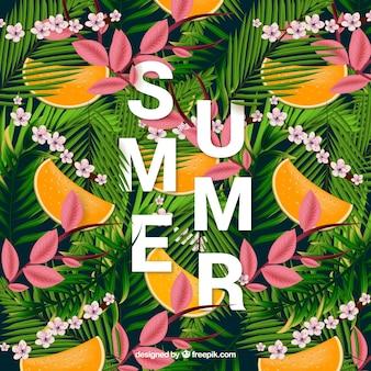 야자수 잎과 멜론 열 대 여름 배경