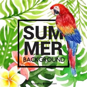 앵무새와 열 대 여름 배경