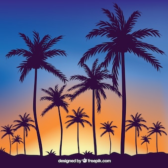 Tropical summer background with silhouettes of palm trees