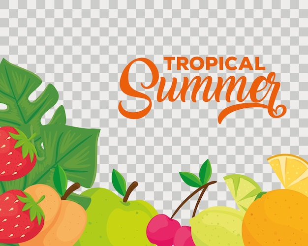 Tropical summer banner, and fresh fruits