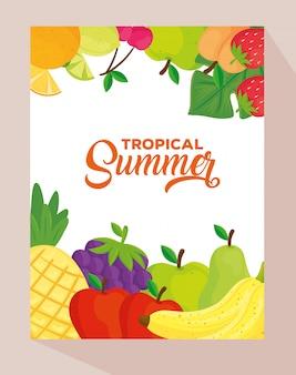 Тропический летний баннер со свежими фруктами