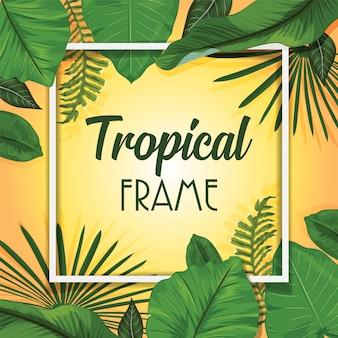Tropical summer frame