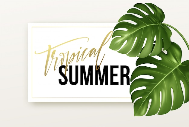 Tropical summer lettering on the background from realistic bright green leaves of monstera.