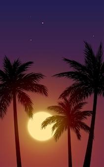 Вид на тропический закат с пальмами в силуэте
