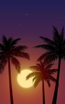 Tropical sunset view with palm trees in silhouette
