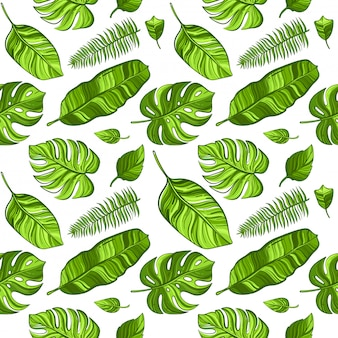 Tropical vector seamless pattern with exotic palm leaves