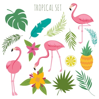 Tropical vector set with pink flamingos, palm leaves and flowers