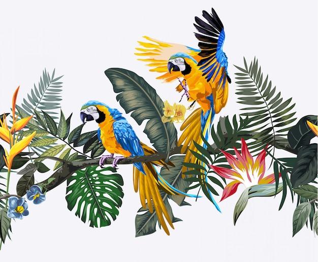 Тропические дикие и попугаи ара