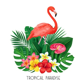Tropical  with toucan