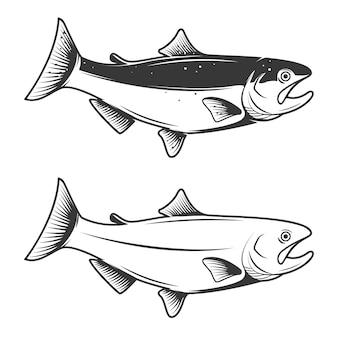 白い背景のマス魚アイコン。ロゴ、ラベル、エンブレム、記号、ブランドマークの要素。