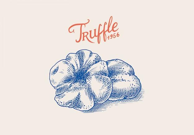 トリュフのキノコのバッジまたはロゴ。刻まれた手描きのビンテージスケッチ。食品を調理するための材料。木版画のスタイル。図。
