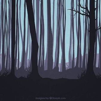 Trunks silhouettes in the forest
