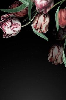 チューリップボーダー劇的な花の背景