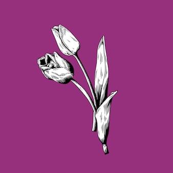 보라색 배경에 튤립 꽃 자연 벡터 아이콘 그리기