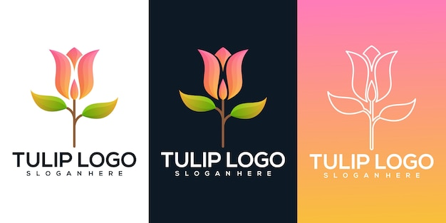 Tulip flower illustration