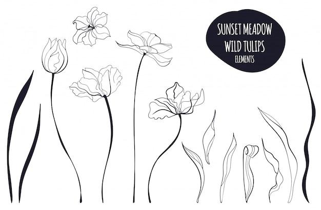 Tulip the line art illustration in the scandinavian style