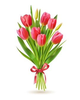 Tulips bouquet on white