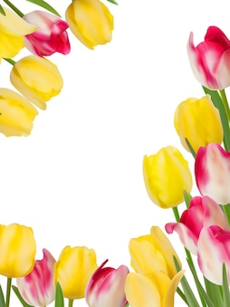 Tulips design template or background.