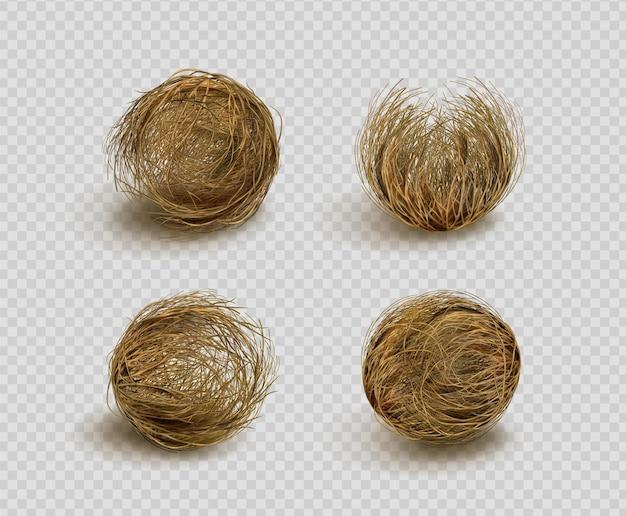 Sfera di erbaccia secca tumbleweed isolata su trasparente