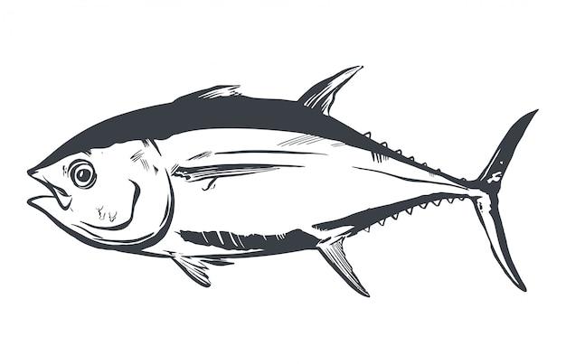 Tuna fish symbol on white background