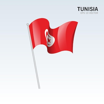 회색에 고립 된 튀니지 흔들며 깃발