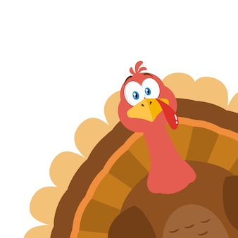 Turkey bird cartoon mascot character peeking from a corner.