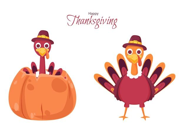 Turkey bird illustration