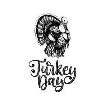 Turkey day, hand lettering on white background. vector illustration of turkey bird for thanksgiving invitation, greeting card template.