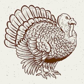 白い背景の上のトルコのイラスト。感謝祭のテーマ。ポスター、グリーティングカードの要素。図