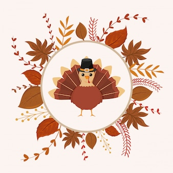 Turkey of thanksgiving with autumn leaves