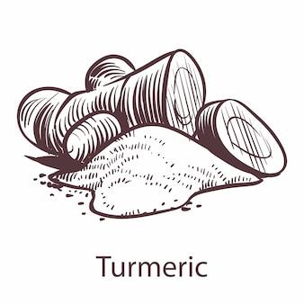 심황 루트 아이콘입니다. 조각 스타일의 레이블 및 패키지에 대한 식물 손으로 그린 스케치. 아로마 테라피 항산화 생강. 레스토랑이나 카페 메뉴의 요리 기호입니다. 벡터 단일 절연 요소