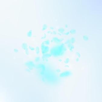 ターコイズの花びらが落ちます。一見ロマンチックな花の爆発。青い空の正方形の背景に空飛ぶ花びら。愛、恋愛の概念。驚くべき結婚式の招待状。