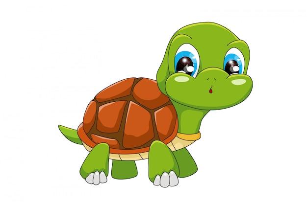 Забавный мультфильм черепаха, изолированные на белом фоне