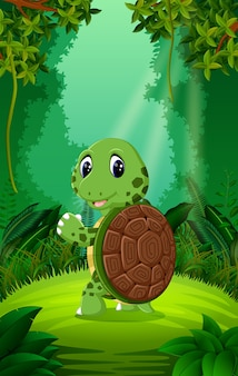 Turtle in the clear and green forest