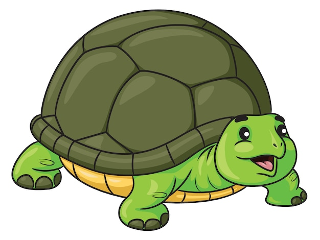 Turtle cute cartoon