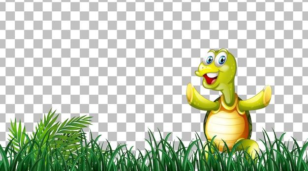 Tartaruga sul campo in erba su sfondo trasparente
