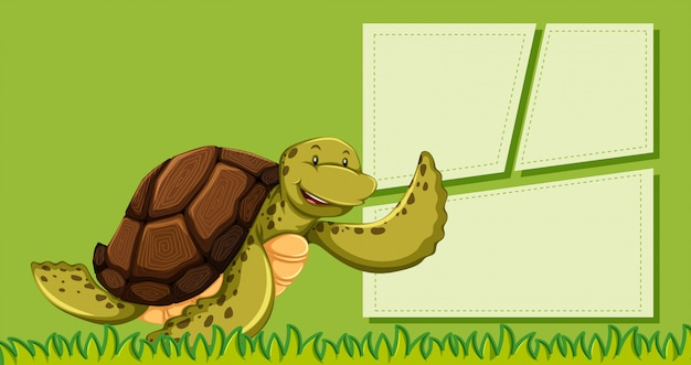 A turtle on green note