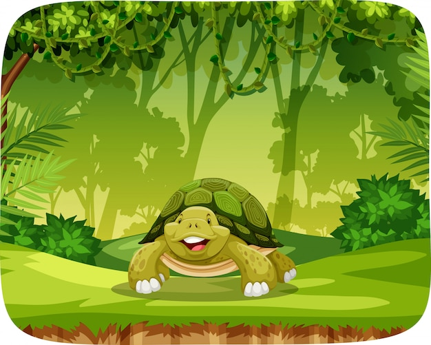 Turtle in jungle theme setting
