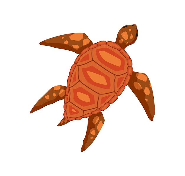 Turtle - sea and ocean animal. fauna character in flat cartoon style. vector cute colorful object isolated on white background