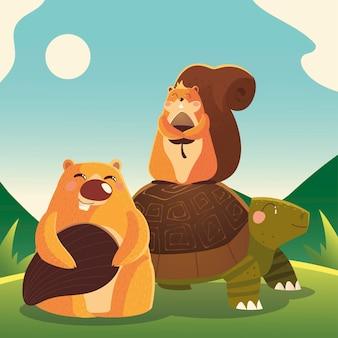 잔디 만화 동물 그림에서 거북이 다람쥐와 비버