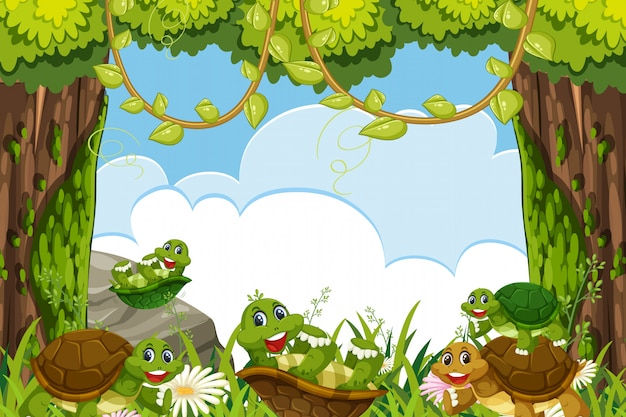 Turtles in jungle scene