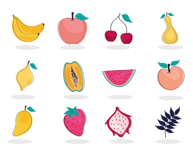 Twelve tropical fruits