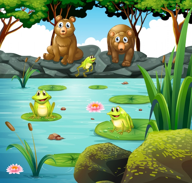 Two bears and three frogs at the pond